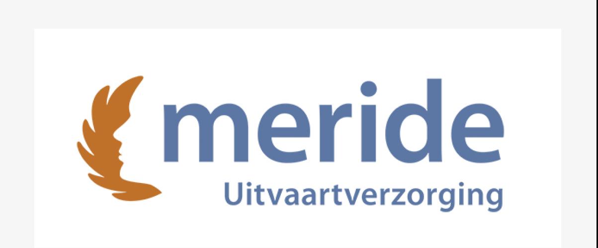 Blog item logo Meride