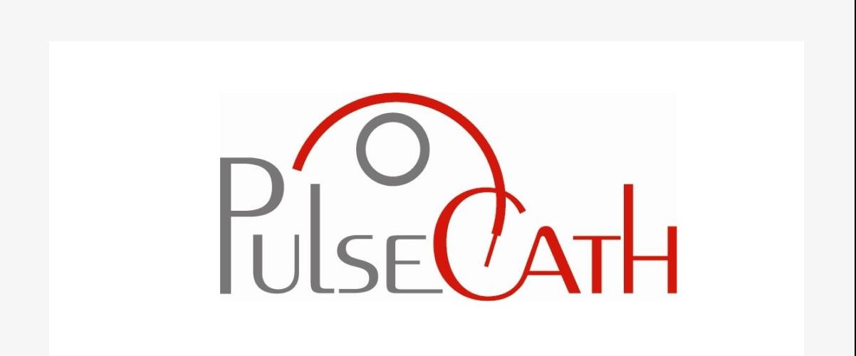 Blog item logo Pulsecath